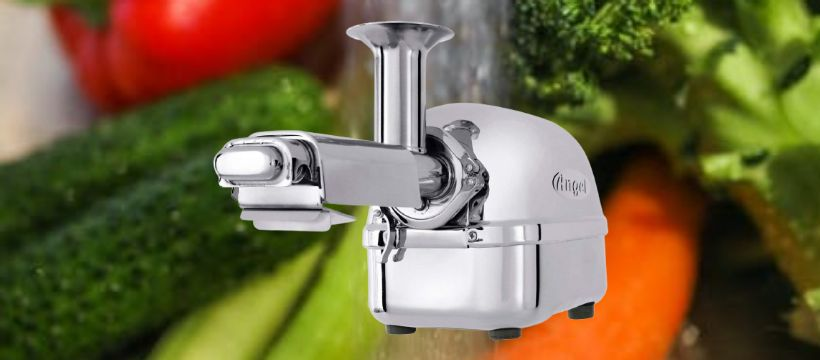 Super Angel All Stainless Steel Twin Gear Juicer